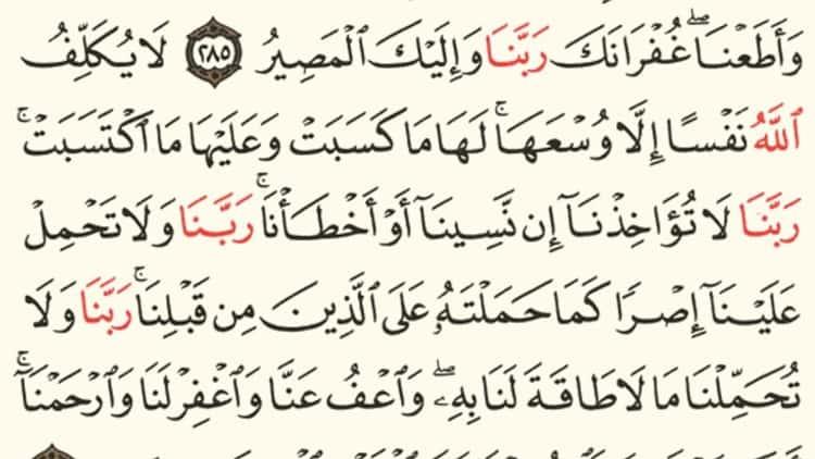 كيفية تحميل تطبيق قرآن ؟