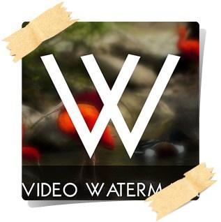 برنامج video watermark لوضع علامة مائية على الفيديو